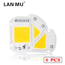 6 PCS LED COB Lamp Chip 10W 20W 30W 40W 50W AC 220V 110V Smart IC Led bulb Light Chip For DIY LED Floodlight Spotlight(China)