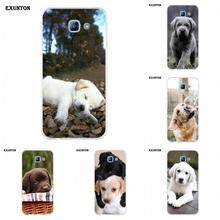 Exunton Labrador Puppies Dog Soft TPU Capa For Galaxy Alpha Core Prime Note 2 3 4 5 S3 S4 S5 S6 S7 S8 mini edge Plus(China)