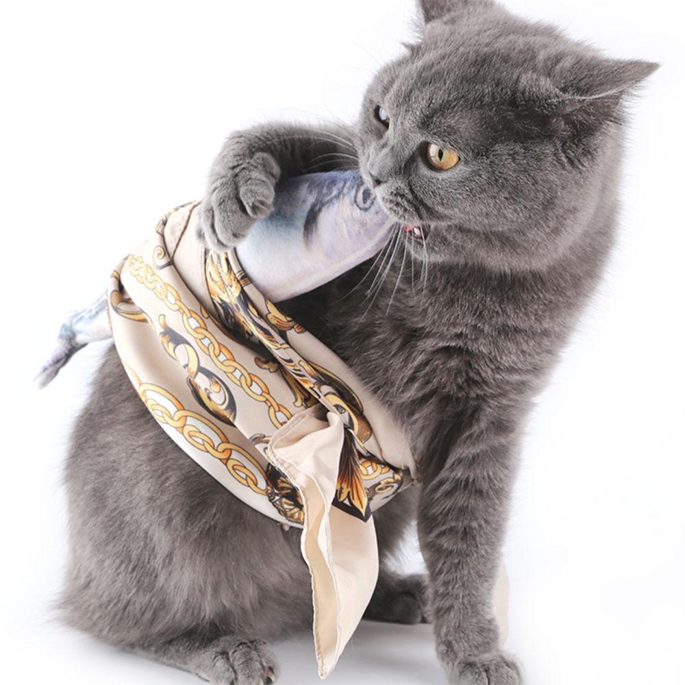 funny fish cat toy Funny Fish Cat Toy-Free Shipping HTB1ZuexSpXXXXaPapXXq6xXFXXXx
