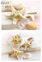 Hot new 1pcs starfish hair pin sea star hairclip hair accessories asteroid hair jewelry Natural sea star clip pictures(China)