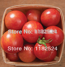Free Shipping 200pcs Pink Bumble Bee (OG) Tomato Seeds fruit vegetables seeds