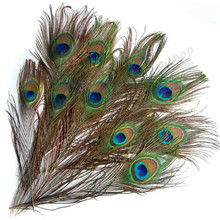 10Pcs Real Natural Peacock Eye Tail Feathers Beautiful Natural Feathers Wedding Party Embellishments Making Decor 10-12 Inches(China)