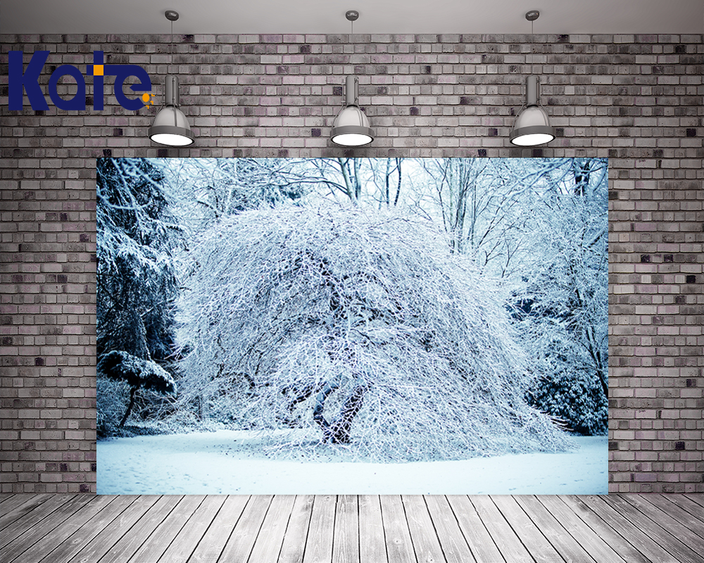 150Cm*200Cm(5*6.5Ft) Kate Natural Scenery Photographic Background White Background Frozen Snow Winter Frozen Tree Background<br>