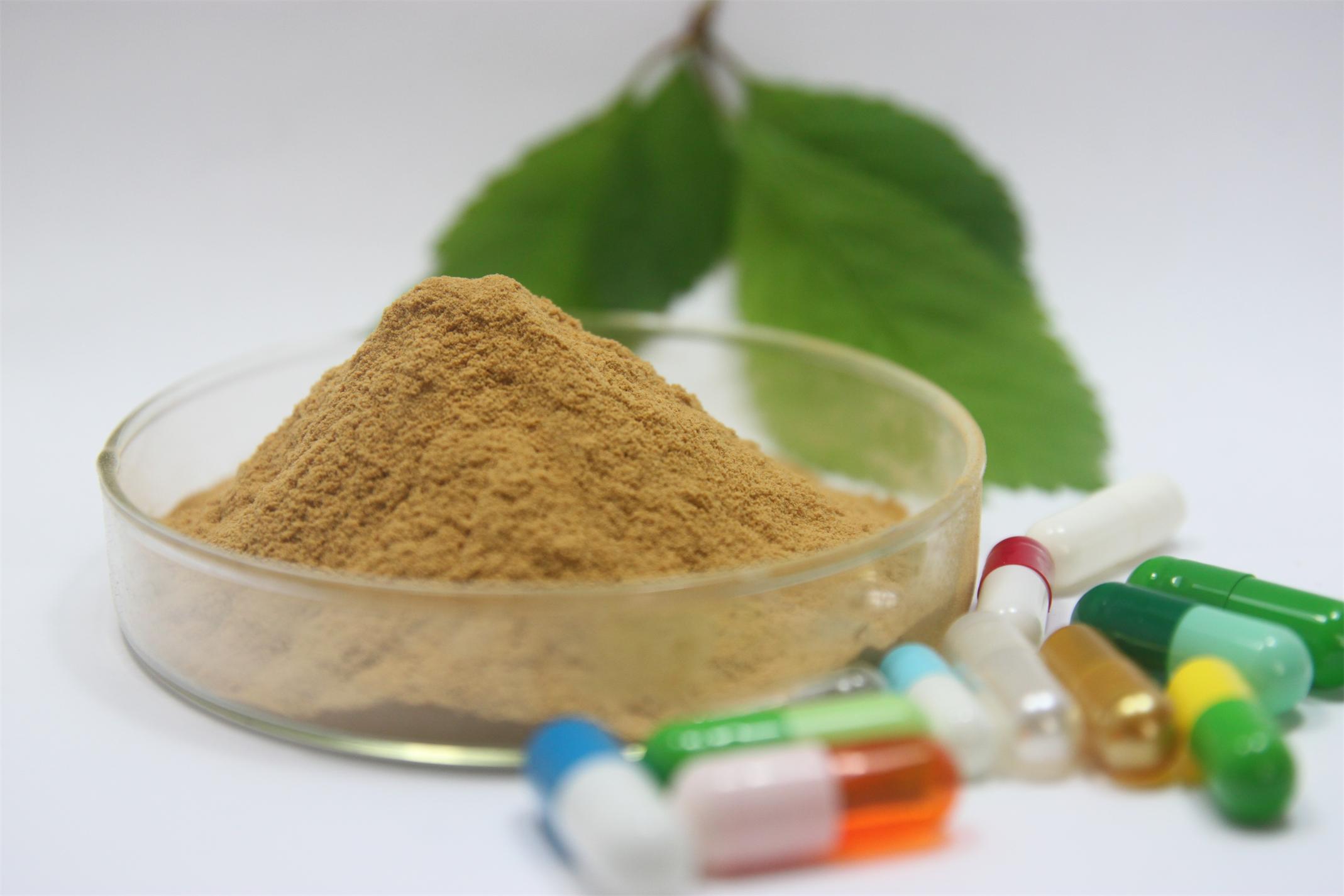 GMP, экстракт зеленого чая порошок с egcg для потери веса таблетки для обмена веществ boost и здоровья сердца 500 грамм(China (Mainland))