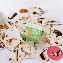 40pcs/set Paper Label Stickers Cute Cartoon Food Cats Plants Flowers Photo Album Diary Scrapbook Calendar Decorative Stickers