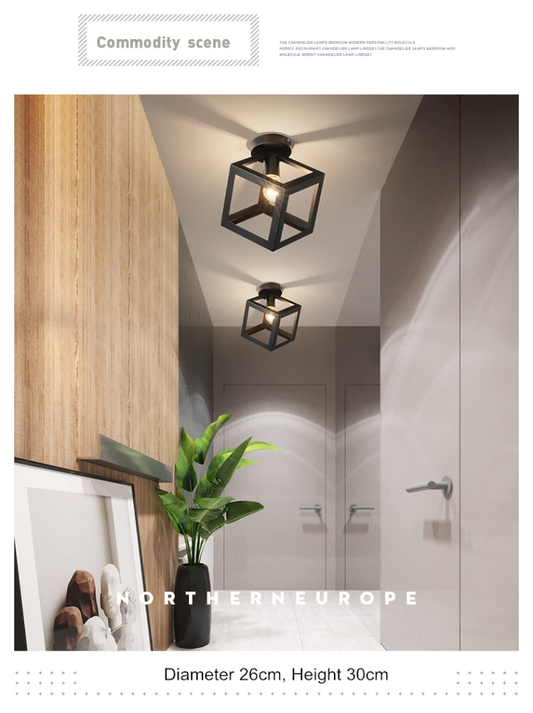 ceiling light lamps iron (3)