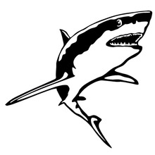 15.2*14.2CM GREAT WHITE SHARK Vinyl Decal Funny Animal Fish Window Decoration Car Sticker Black/Sliver C6-1254(China)