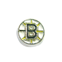 20 Pcs Enamel American Hockey Boston Bruins Charms Alloy  Locket Charms For Glass Living Memory Locket