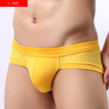 Buy Mens Mesh Underwear Big Size Underpants Solid Panties Low Waist Male Boxer Breathable Boxer Shorts Underwear Men Plus Size 3XL