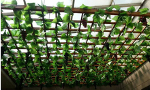 12pcs/lot250cm / 8.2ft Long Artificial Plants Green Ivy Leaves Artificial Grape Vine Fake Foliage Leaves Home Wedding Decoration(China)