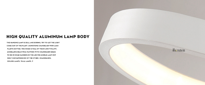 Modern Minimalism Oval Ring LED Pendant Lights Aluminum Acrylic Suspension Hanging Lamps For Dining Room Restaurant Office (19)