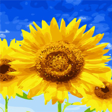 Sunflowers Blue Sky Abstract Oil Painting By Numbers DIY Digital Picture Coloring By Numbers On Canvas Unique Gift Home Decor
