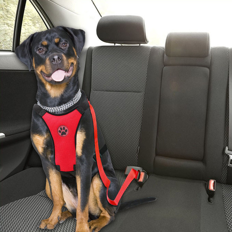 Breathable Mesh Dog Harness Leash With Adjustable Straps Pet Harness With Car Automotive Seat Safety Belt Dog Chest Straps (4)