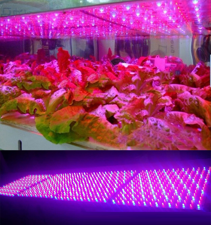 2017 New Arrival LEDwholesalers 2501MX Blue/Red 225 LED 13.8 Watt Square Grow Light Panel 110 Volt<br>