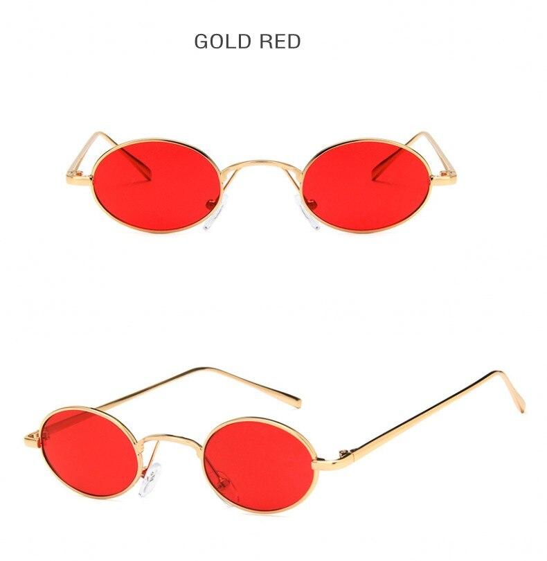 tinted sunglasses (5)