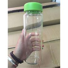 Plastic Outdoor Camping Portable Sport Travel Fruit Water Bottle 500ML Green PML