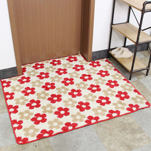Carpet manufacturers price entry entry porch home carpet mat floor mats non-slip dust door can be customized(China)