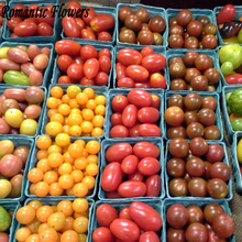 Mixed 20 Types Of Rare Heirloom Cherry Tomato Seeds , 100 Seeds / Bag , An Organic Vegetable Salad Seeds