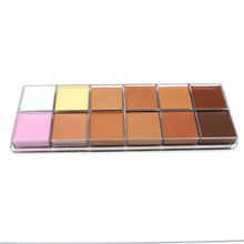IMAGIC  Cometic Base Makeup Concealer Foundation Palette Powder  Brush 12 Colors Beauty Contour Makeup