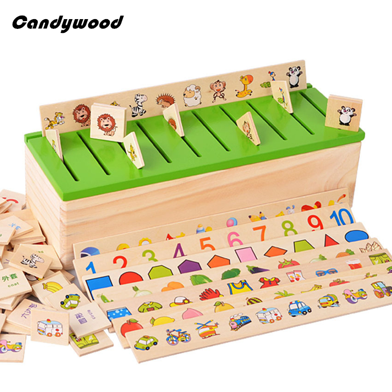 Montessori Teaching Aids Classification Box Wooden Toys early childhood Educational Toy Category Boxes Baby Learn Toys<br><br>Aliexpress