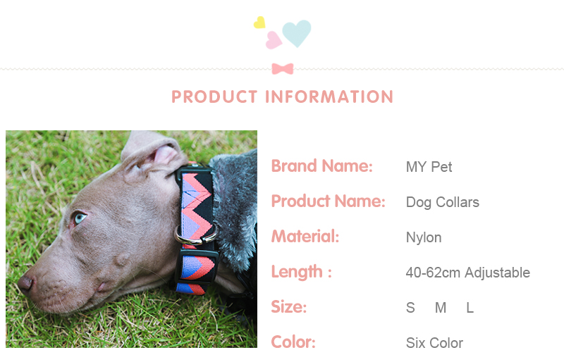 Outdoor Nylon Dog Collars Mascotas Pet Dogs Neck Straps Puppy Led Dog Collar Strong Colorful Wave 40-62CM Adjustable HD002004 (2)