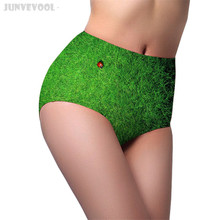 Knickers for Women Animal Print High Waist Underwear M L Underpants Soft Knicker Women's Lady Briefs Panties Grass Ladybugs Pant