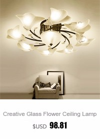 Living Room Ceiling Lamp (3)