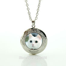 Animal jewelry necklace kitten photo glass dome pendant necklace silver plated chain women men jewelry channel necklace N690(China)