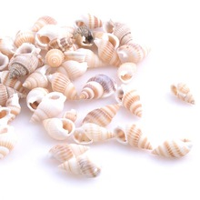 19-25mm Natural Spiral Sea Shell Conch Loose Beads for Jewelry Making DIY 100pcs TRS0126