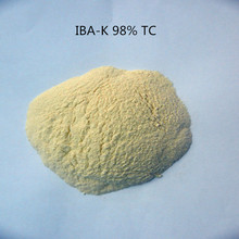 30g indole-3-butyric acid potassium IBA-K water soluble 3-Indolebutyric Acid potassium 98% IBA Salt/IBA Auxin with low pric(China)