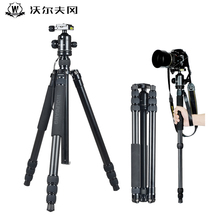 Wolfgang JZ-609+YT03 lightweight portable camera tripod professional aluminium alloy tripod digital SLR camera