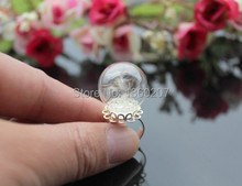12pcs/lot 20mm Real dandelion ring ,dandelion seed jewelry , good luck ring , dandelion wish