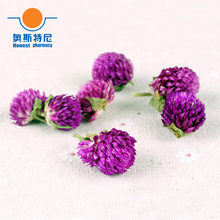 100g Free shipping Chinese herb tea dried Gomphrena globosa flower tea&globe amaranth Flower tea