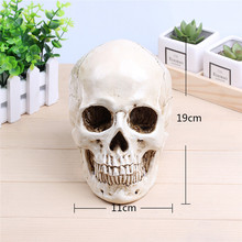 P-Flame White Human Skull Planter Archaize Garden Storage Pots Resin Finish Skeleton Container Flowerpots For Decoration(China)