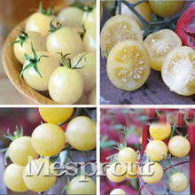Promotion! 100PCS White Cherry Tomatoes Seed Balcony Fruits Seed Vegetables Potted Bonsai Potted Plant Tomatoes Seeds ME#1647