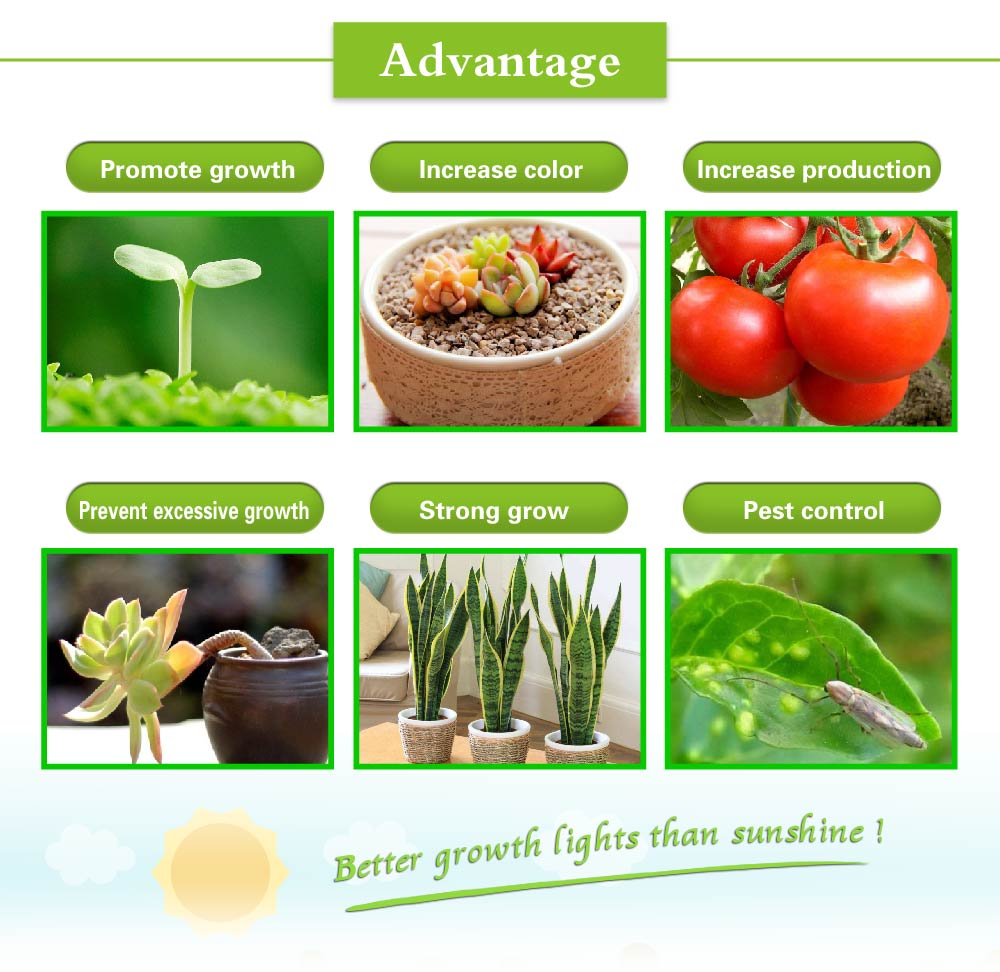 2PCS 300W Growth lights 16 bands Hormones Fertilizer Plant grow bloom pots Greenhouse tissue culture Garden plants Indoor grow 4