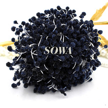 Free Shipping New 5mm Black color Glass Round Artificial Flower Stamen Cake Decoration Sugarcraft and wedding card DIY(China)