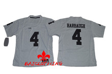 Free Shipping Nike 2016 Heather Gray Michigan Wolverines Jim Harbaugh 4 College Football Limited Boxin Jerseys(China)