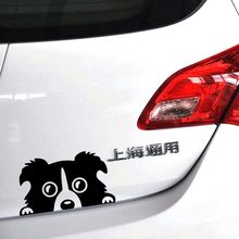 1PC 14*8cm 2016 New Design funny car stickers Peeking Border Collie Dog Vinyl Decals Truck Decor Car Door Body And Motorcycle(China)