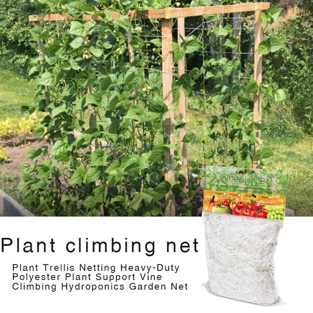 Rede Branco Garden Trellis Planta Trellis Net para plantas Trepadeiras 1.67 X 10m