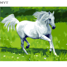 Free Shipping Picture White Horse Diy Digital Painting By Numbers Arcylic Paint Handpainted Oil Painting Unique Gift On Wall(China)