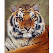 Megayouput 5D diy diamond Painting diamond Embroidery Cross Stitch tiger picture Diamond Mosaic home decor arts and crafts