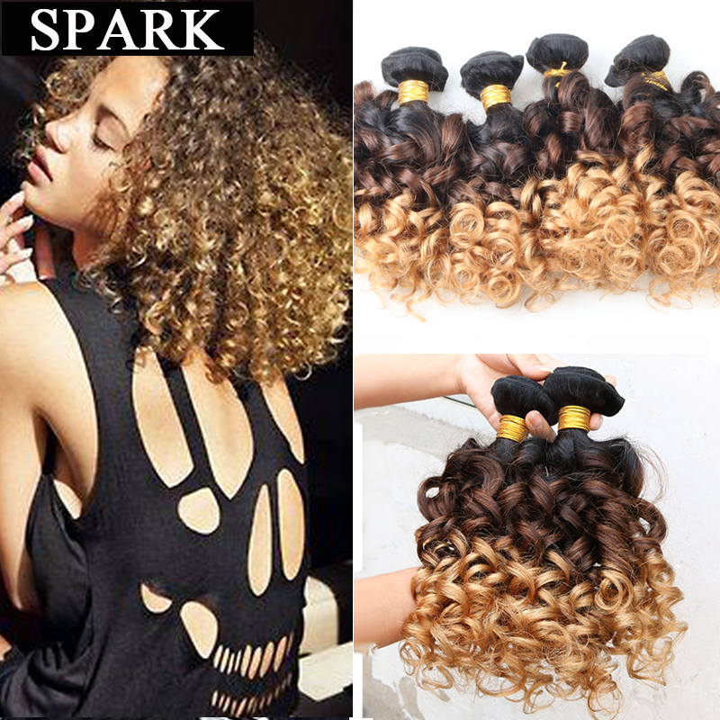 7A Ombre Brazilian Virgin Hair Jerry Spiral Curl Human Hair Weave 3 Or 4pc Bouncy Curl Kinky Curly Virgin Hair Wigs For Black<br><br>Aliexpress
