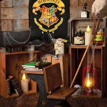 Harry Potter Halloween light room book wood background High quality Computer  print newborn baby backdrops( 00504442015e
