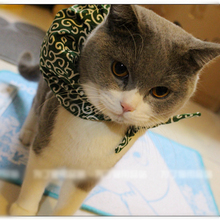 Run Away from Home!! Pet Cat Teddy Kawaii Small Baggage Collar