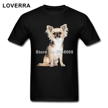 100%Cotton Fabric Tee Shirt Chihuahua Men T-Shirts XS-XXXL Pure Color Brand Clothing For Teenager O-Neck Fitness Summer TShirt(China)