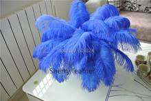 Free Shipping-100 pcs12-14inch(30-35cm) royal blue Ostrich Feather Plume for event table decor feather decor wedding decor(China)