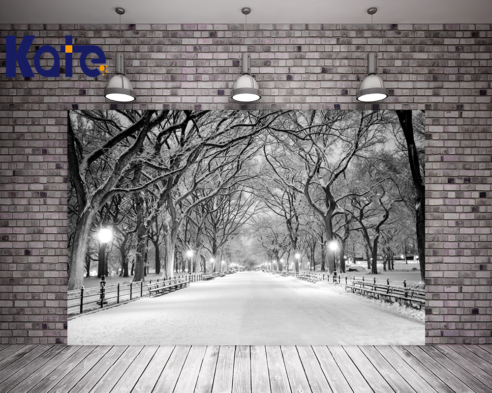 Kate Frozen Snow Photography Backdrops White Winter Tree Photo Background Country Road For Wedding Studio Backdrop<br>