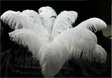 "Sell high quality 20pcs / lot white ostrich feather 18-20 ""/ 45-50cm, DIY jewelry accessories /Wedding decoration(China)"