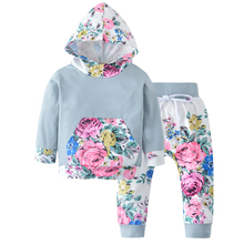 Baby Clothing Sets 2017 Autumn Baby Girls Clothes flower Hoodies Sweatshirt+ Pants 2pcs Outfits Set Tracksuit(China)
